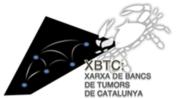 Logo XBTC