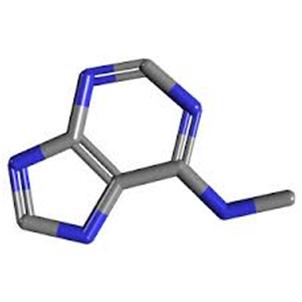 metil-adenina