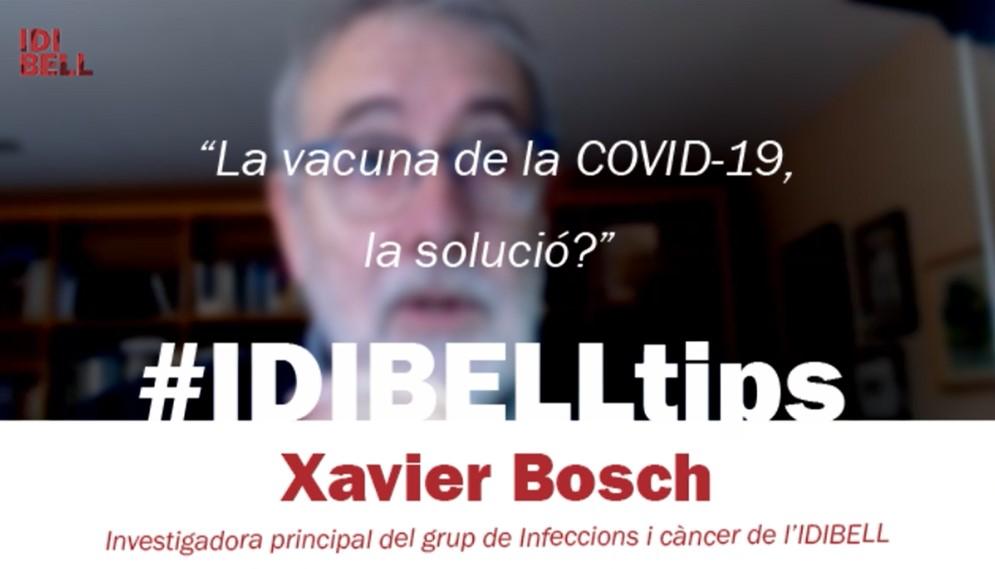 NO14 - IDItips Bosch - Imatge
