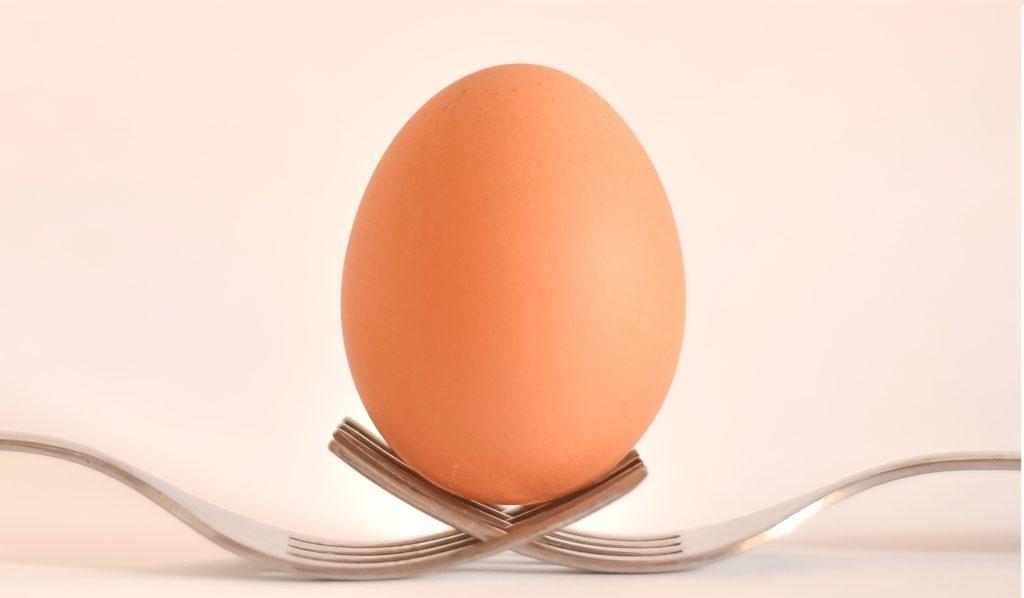 egg-food-forks-17609