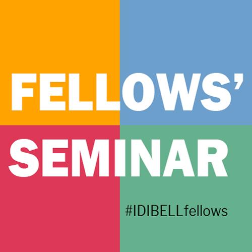 Fellows-seminar