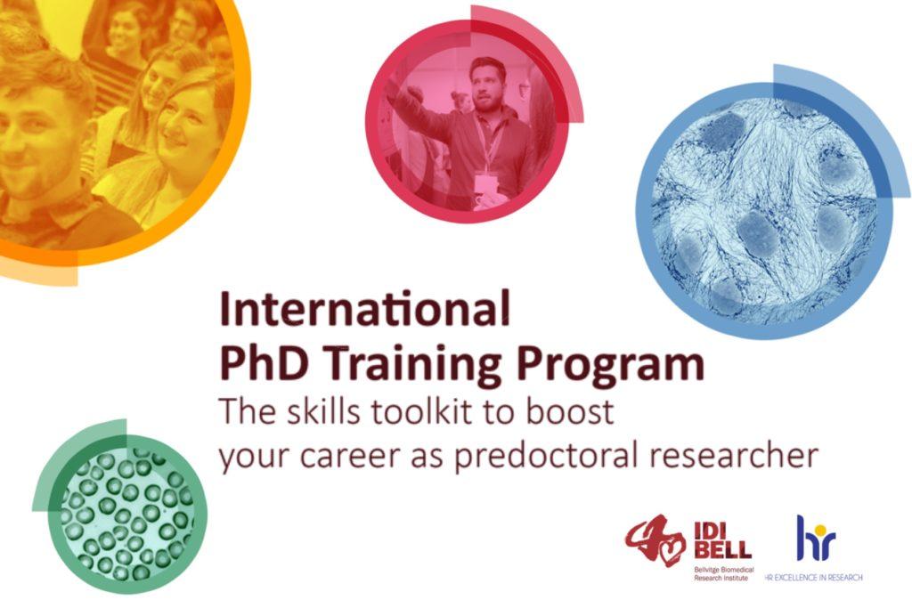 Phd programme